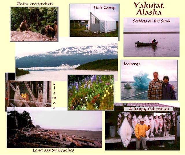 Fish the Situk River, see bears, and long sandy white beaches in Yakutat, Alaska.